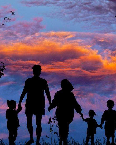 Un verano para redescubrir la familia 1